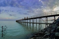 sea sky marina lens nikon free photographers fisheye finepix fujifilm kuwait q8 dasman 105mm s5pro sanfora nadamarafie