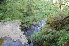 lynn falls view from top (gordonjc) Tags: scotland top falls lynn dalry ayrshire lynnglen northayrshire garnockvalley