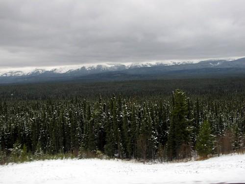Alaskan Drive - Day 8-22