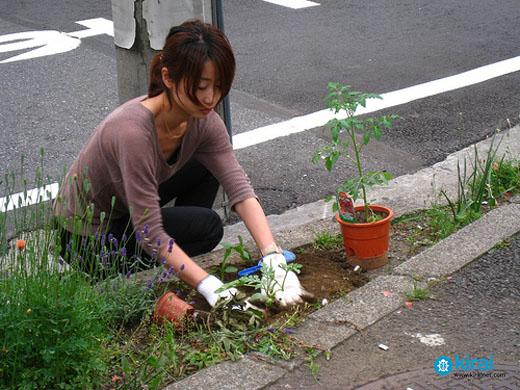 guerilla-gardening-tokyo-2
