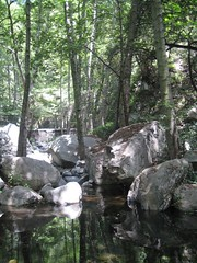 Santa Anita Stream.jpg (Mount Wilson, California, United States) Photo