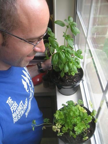 Herb Garden [365portraits: 179]