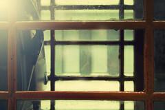 (marietta_10) Tags: pink blue wedding portrait england españa woman usa newyork colour london love valencia girl beauty mobile azul nice mujer spain eyes cabin call chica phone heart skin sweet retrato amor boda bonito rosa happiness lips nostalgia cabina blond future thinking rubia labios bella felicidad marietta calling telefono corazon belleza dulce fiance novia piel pensativa delicado