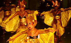 Bali Dancers / Balinese Dance - Yellow Moths (Dominic's pics) Tags: bali orange yellow indonesia gold golden dance costume dancers traditional culture slide scan event filter transparency moths 1998 noise hindu performer dharma canoscan balinese agama seriousexpression reducenoise balinesedance 8800f agamahindudharma