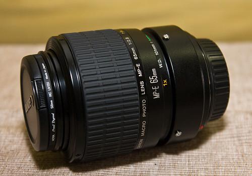 Canon MP-E65 1X-5X Macro Lens IMG_5351