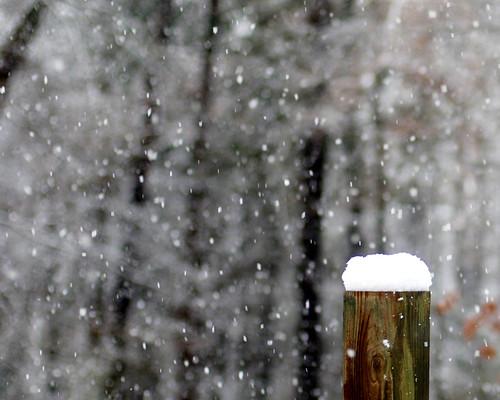 v snow 047