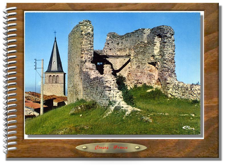 ST-MARTIN-en-HAUT  Château de Rochefort