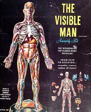 Marcel Jovine Visible Man