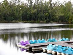 Tree Tops Park (tchamber236) Tags: vacation florida weston vacationvillage