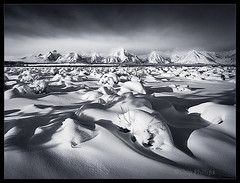 B&W Grand Tetons (Chip Phillips) Tags: park christmas winter bw white black landscape photography phillips grand jackson national chip wyoming teton ostrellina alemdagqualityonlyclub