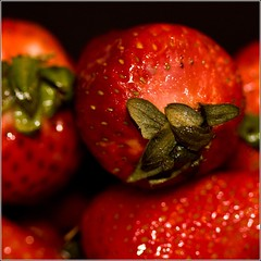 Berry Berry Tweet (bahketni) Tags: red white color macro fruit square fun strawberry berry humor cartoon blues monday rofl mostviewed tweetybird explored flickrsbest bahketni berryberrytweet
