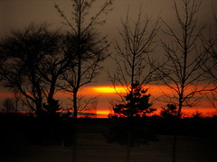 Wisconsin Sundown....... (**Ms Judi**) Tags: trees sunset red orange black colors beautiful wisconsin dark gorgeous branches awesome peaceful explore stunning lovely magical breathtaking beautifulsky enchanting richcolors godsgift sungoingdown explored msjudi eveninghour peshtigowisconsin judistevenson