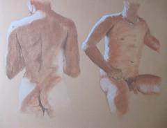 Male Torso Studies