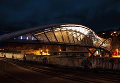 Amgen Trainyard (Gabriel Tompkins) Tags: seattle city longexposure bridge usa architecture night train washington nikon waterfront tracks le pacificnorthwest nikkor washingtonstate pnw 2009 emeraldcity 18105 d90 18105mm nikond90 18105mmf3556gvr tronam gabrieltompkins