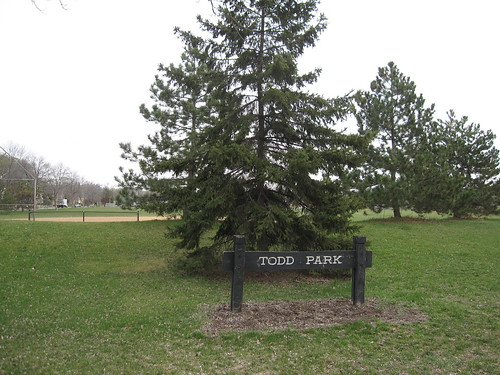 Todd Park
