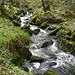 River Kennal 1