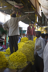 2007_10_27_Flower Market 1 zzzFlickrMP (robertsladeuk) Tags: city flowers people urban india man male men digital asian person town petals asia forsale market interior indian stall goods indoors human vendor inside marketplace produce karnataka mysore selling garlands upload004 zzzflickrmp disc114 robertmanorphotographycom