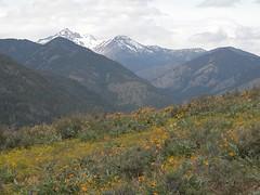 Summit meadow with Story Peak and Gardners.JPG