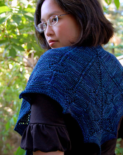 planters wart pictures: scarf knitting pattern circular needles