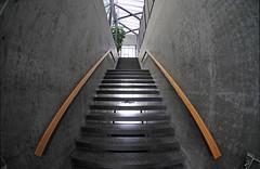 ⥥⥣ (Toni_V) Tags: backlight stairs schweiz switzerland europe tripod stairway fisheye hsr gitzo rapperswil d300 105mm arcaswiss toniv gt1540 hsrch architekturforumobersee