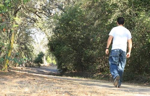 Walk Away, Walk Away