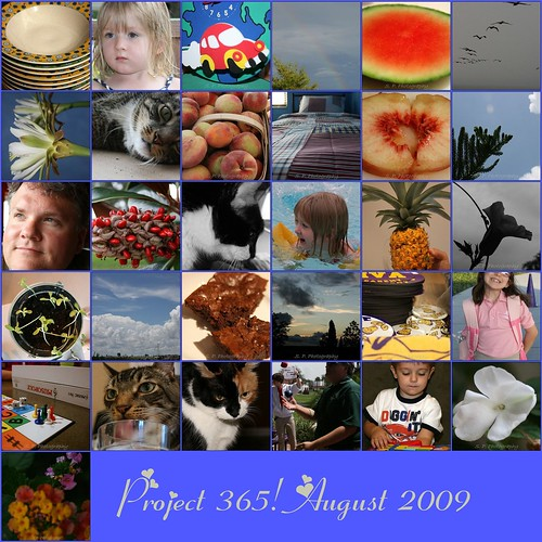 Project 365 Mosaic August 2009