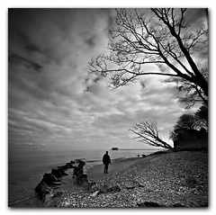 Bembridge Square Series #5 Take a walk on the wild side. (s0ulsurfing) Tags: ocean trees winter sea wild sky blackandwhite bw cloud white seascape black tree beach nature water lines silhouette clouds composition contrast square landscape island grey mono coast sand skies natural walk patterns wide perspective shoreline silhouettes wideangle monotone pebbles coastal filter shore windswept vectis isleofwight solent figure vista coastline february stark grad solitary landschaft isle 2009 diffused squared rugged wight desolation bembridge altocumulus 10mm sigma1020 nd4 s0ulsurfing aplusphoto eastwight bembridgelifeboat mondocafeclub bembridgebay
