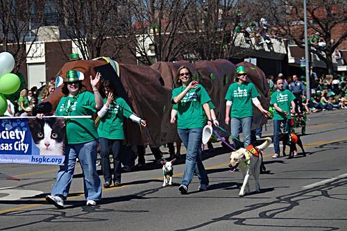Humane Society Wiener Dog