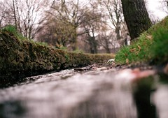 pentax me test  shot 01 (zaphad1) Tags: park camera old test eye film me water k 35mm river out lens moving stream experimental view pentax takumar leicester low experiment ducks down super rapids hills brook f2 unusual manual date swimmers viewpoint smc spinney pentaxme washbrook