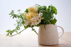 0903 bouquets #1