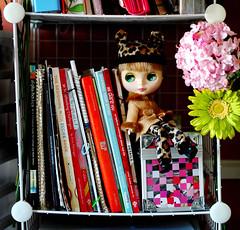 Amongst Her Stuff