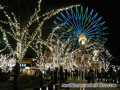 The lighted ferris wheel looks very different at night