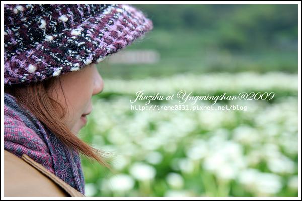 090412_00_竹子湖