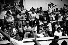 COCKFIGHT (4) (Peter_O'Driscoll) Tags: gambling game spur fight fighter attack culture cockpit clash peter coliseum rooster tradition breed combat gamble betting bet cultural gladiator manok gamecock gambler gallera sabong wager bloodsport cockfighting odriscoll stamina warrier panay gamefowl hahnenkampf cityoflove iloilocity combatdecoqs rinhadegalo bulang 鬥雞 colseum sagupaan đágà combattimentodigalli bulangan pasampok 闘鶏 닭싸움 riñadegallos петушиныебои ตีไก่ sabonero manoktukaan peterodriscoll