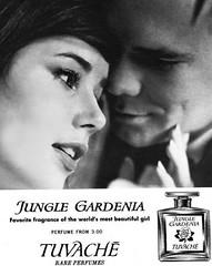 Colleen Corby tuvache (AngoraSox) Tags: blackandwhite boyfriend fashion perfume colleen teenagers retro dating 1960s sixties corby seventeen colleencorby sixtiesads