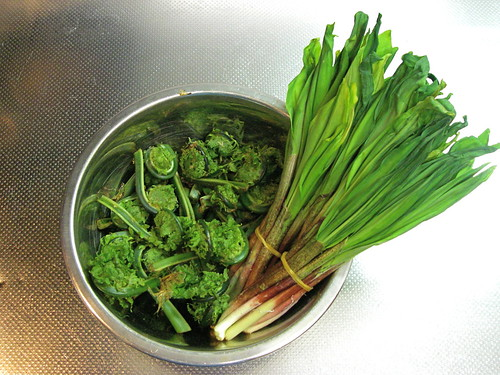 Fiddleheads and ramps