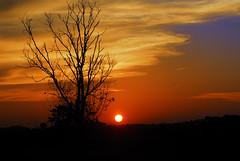 sunset padang rimba