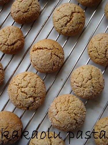 grandmothers ginger cookie2