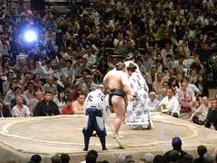 日馬富士 画像69