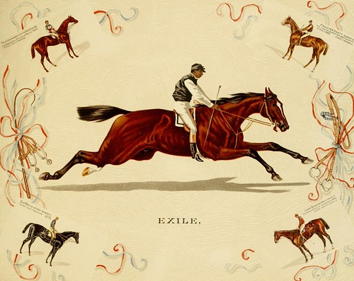 Album of celebrated American and English running horses