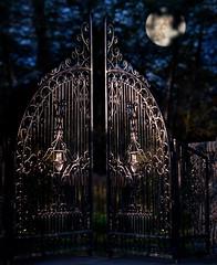 moon gate (marianna armata) Tags: urban moon canada black metal night fence lumix gate iron quebec montreal panasonic fancy g1 lit posh ornate friday expensive fenced exclusive marianna detailed armata wraught