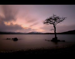 Yin & Yang (Chee Seong) Tags: uk longexposure sunset sky lake water rock clouds canon scotland nationalpark calm hills trossachs lochlomond hoya canon1022mm nd400 explorefrontpage explore11 400d milarrochybay famoustree