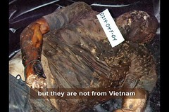 but they are not from Vietnam