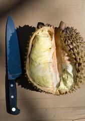 durian open