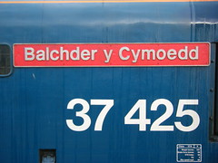 Nameplate for class 37, 37425 (johnzebedee) Tags: heritage diesel transport railway preservation mnr midnorfolkrailway johnzebedee