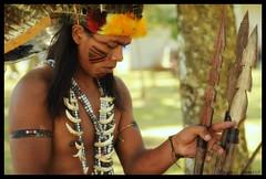 Indios Bertioga (Regina Simes) Tags: people cores casa pessoas indios cultura indigenas indio tribo incas bertioga povo guarani morada indigena moradia terena simoes karaj etnias bertiogasp simes paresi xerente manoki mehinako reginasimoes reginasimes halit festivalnacionaldebertioga parquetupininquins