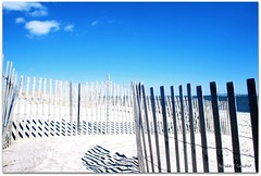Crossing The Fences (Ronaldo F Cabuhat) Tags: ocean birthday wood travel family blue trees shadow sea vacation sky music white art love beach colors beautiful beauty lines clouds canon fence square fun island happy photography coast photo sand scenery day peace tour shadows view bright picture shapes fences happiness sunny bluesky pic visit scene images swing longislandny longisland spots coastal wires shore silence alive sight lovely seashore figures atlanticocean fireisland powderblue saltwater eastcoast lively fireislandnationalseashore canoneosdigitalrebelxti woodfences cabuhat exploreinterestingness24apr09 crossingthefences photograpghs wiredfences