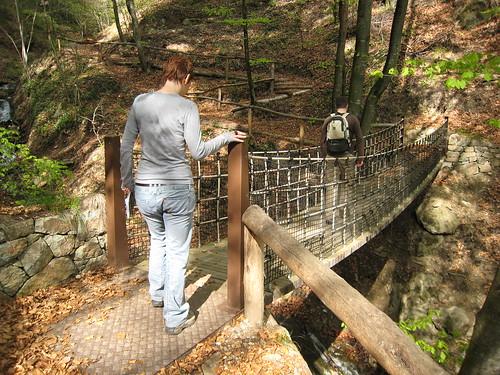 Eine Hängebrücke führt über ein Bächlein durch den Wald entlang des Höfeweges in Völs am Schlern - interessant auch für Kinder