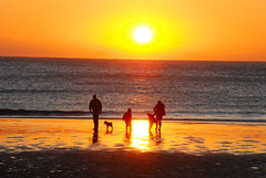 A Family Enjoying the Sunset at Birling Gap (antonychammond) Tags: uk family sunset sea england dog sun beach britain nationaltrust eastsussex soe birlinggap blueribbonwinner bej abigfave anawesomeshot flickrhappy citrit theunforgettablepictures theperfectphotographer goldstaraward