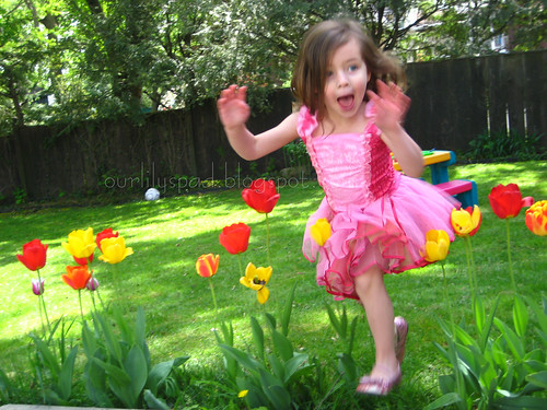 Jumping through the tulips